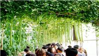 第二十届中国(寿光)国际蔬菜科技博览会将于