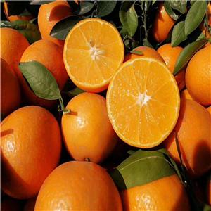 秘鲁已成为拉美第一大柑橘出口国
